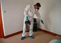 شركة مكافحة النمل الابيض بالجبيل 0557312007