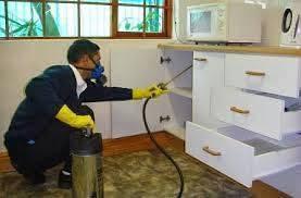 شركة رش مبيدات بالقطيف شركة رش مبيدات بالقطيف شركة رش مبيدات بالقطيف 0557312007 8 2