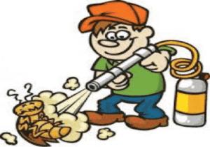 شركة رش مبيدات بالرياض شركة رش مبيد بالرياض شركة رش مبيد بالرياض 0553551993