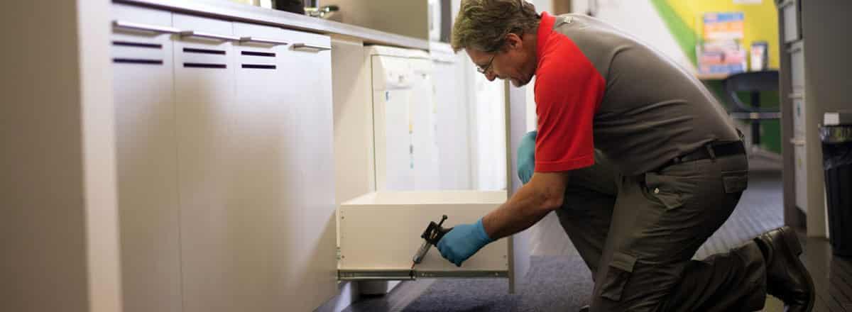 شركة مكافحة الحشرات بالرياض شركة تنظيف و شفط البيارات بالرياض شركة تنظيف و شفط البيارات بالرياض 0551556264