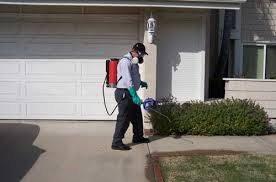 شركة رش مبيدات بجازان شركة رش مبيدات بجازان شركة رش مبيدات بجازان 0550362055