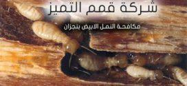 شركة مكافحة النمل الابيض بنجزان
