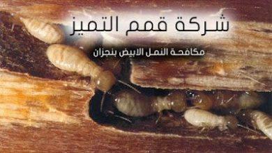 Photo of شركة مكافحة النمل الابيض بنجران 0507394007