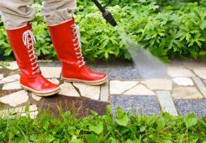 شركة رش مبيدات بابها شركة رش مبيدات بابها شركة رش مبيدات بابها 0555024104 1
