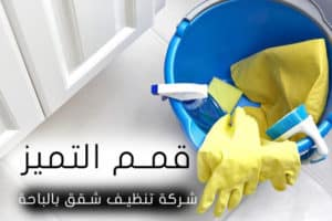 شركة تنظيف شقق بالباحة 0555024104