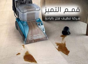 شركة تنظيف فلل بالباحة 0555024104