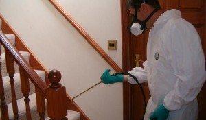 شركات مكافحة حشرات بضرماء شركة رش مبيدات بضرماء شركة رش مبيدات بضرماء 0553551993