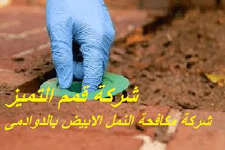 Photo of شركة مكافحة النمل الابيض بالدوادمى 920008956