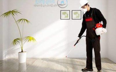شركة مكافحة حشرات بالمدينة المنورة 0553473381