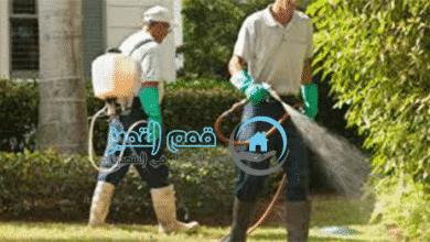 صورة ارخص الاسعار لشركة مكافحة حشرات بالجبيل 0555908136