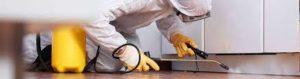 شركة مكافحة النمل الابيض بالخرج شركة مكافحة النمل الابيض بالخرج شركة مكافحة النمل الابيض بالخرج images 4 300x79