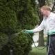 شركة مكافحة حشرات بالاحساء شركة رش مبيدات بالخرج شركة رش مبيدات بالخرج spraying earwigs 80x80