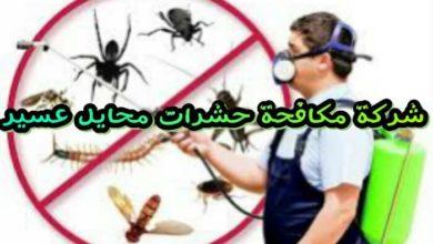 Photo of شركة مكافحة حشرات بمحايل عسير 0507394007