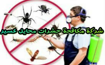 شركة مكافحة حشرات بمحايل عسير 0555024104
