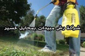 شركة رش مبيدات بمحايل عسير20 شركة رش مبيدات بمحايل عسير شركة رش مبيدات بمحايل عسير 0550362055 20 300x198