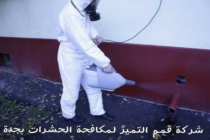 شركة مكافحة حشرات بجدة 20117329 214761129048013 1798815750 n